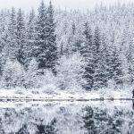 The Top 5 Winter Activities to Enjoy in the Okanagan