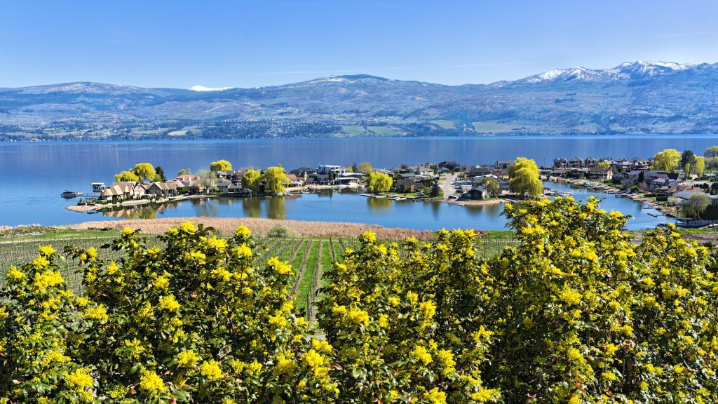 Read more on Why Kelowna Real Estate is a Buyers Dream