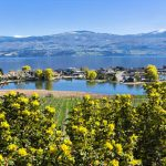 Why Kelowna Real Estate is a Buyers Dream